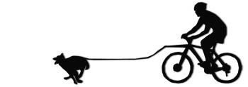 Jalgrattavedu